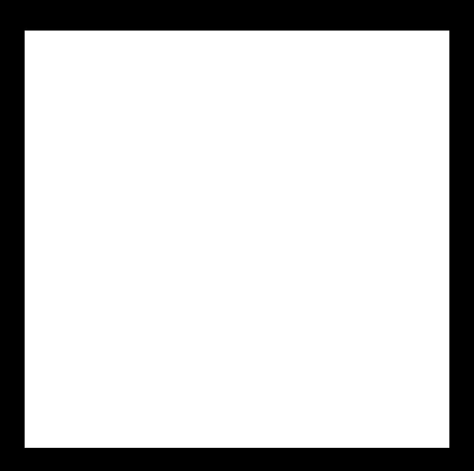 FAW logo white